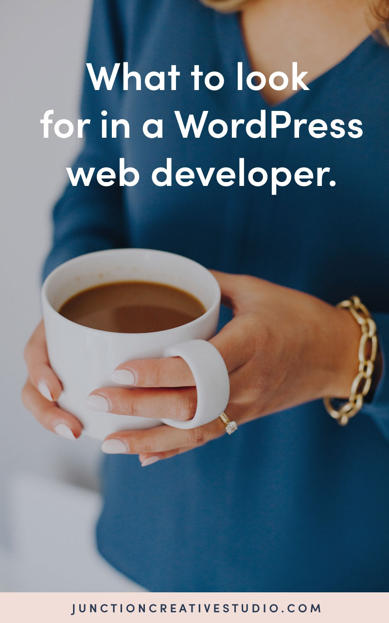 what-to-look-for-in-a-wordpress-web-developer